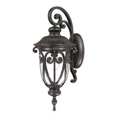 Acclaim Lighting Naples 22.75-in H Marbleized Mahogany Outdoor Wall Light