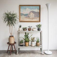 Instagram media homesteadseattle - plant display cart  #interiordesign #seattle…