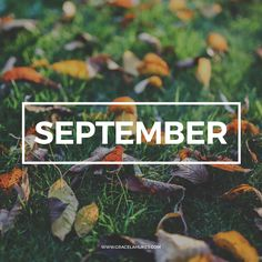 My monthly mixtape for September 2015. Featured artists: Halsey, Odessa, Wolf Alice, Masha, The Lighthouse and the Whaler, Delta Spirit, and Muse.