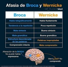Broca and Wernicke areas Medicine Notes, Medicine Student, Internal Medicine, Studying Medicine, Health Literacy, Medical Laboratory Science, Med Lab, Medical Anatomy, Med Student