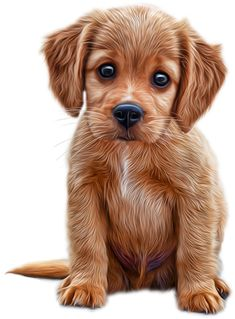 Cute Little Puppies, Cute Little Animals, Cute Puppies, Cute Dogs, Cute Animals Images, Animals And Pets, Cute Dog Drawing, Animals Kissing, Cutest Puppy Ever