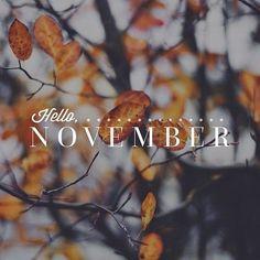 leaves, november, and hello november image
