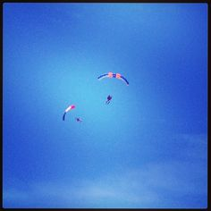 Up in the air! Skydive in Efes