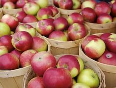 Dr. Daniel Amen's Best Brain Healthy Foods: Apples #DanielPlan