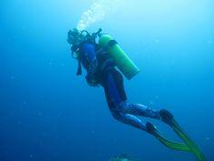 scuba diving | Fiji Diving in Paradise: Discover Scuba Diving