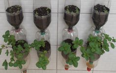 Vertical garden in bottles Plastic, stacked, see all the details to make a beautiful garden for vegetables and herbs, is simple and You'll like! Thanks for v...