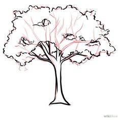 How to Draw a Cherry Tree: 7 Steps - wikiHow