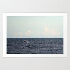 Whale++Art+Print+by+Michael+Nowak+-+$20.00