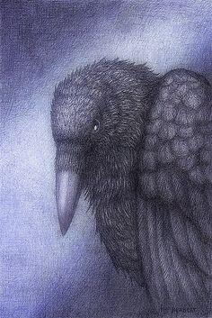 """Return of the raven"" by Indigo46   RedBubble"