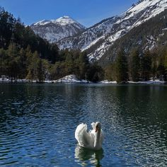 Fernsteinsee, Winter in Tirol. Medium Art, Rivers, Lakes, Austria, Scenery, Mountains, Winter, Nature, Travel