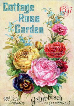 Vintage Advertising Cottage Garden Roses by CottageRoseGraphics, $3.95