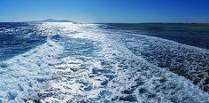Glistening sea in Nabq Bay on the Sinai Peninsula in Egypt