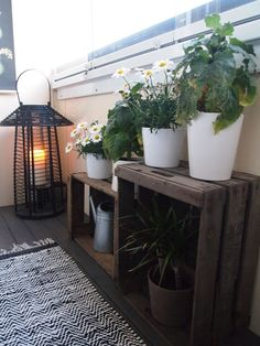 Bedroom Decoration - Toilet Decoration - for Small Spaces Gallery - Balkon - Design RatBalcony Plants tan Furniture Cozy Apartment Decor, Apartment Balcony Garden, Apartment Balcony Decorating, Apartment Balconies, Cool Apartments, Apartment Plants, Apartment Patios, Apartment Design, Patio Ideas For Apartments