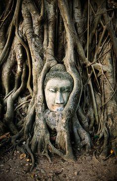 108 Buddhas | Thailand