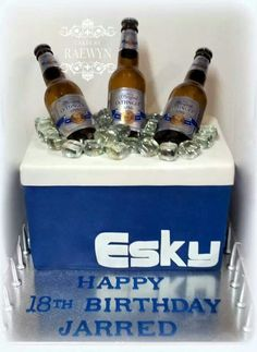 Esky cake 18th Birthday Cake For Guys, Novelty Birthday Cakes, Birthday Desserts, Birthday Beer, Australia Cake, 30th Party, Beer Bread, Cake Decorating Techniques, Themed Cakes