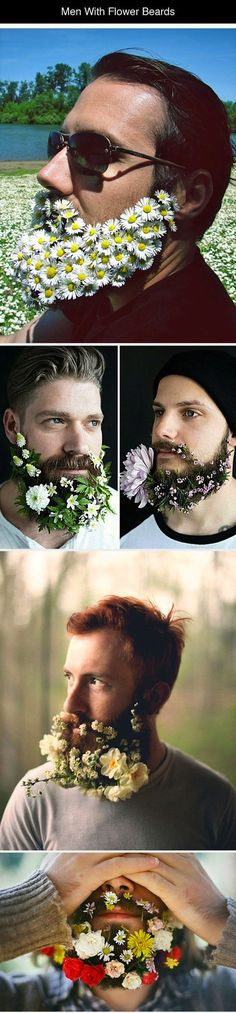 Funny pictures about Men With Fabulous Flower Beards. Oh, and cool pics about Men With Fabulous Flower Beards. Also, Men With Fabulous Flower Beards photos.