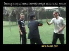 Bagua fighting usage show