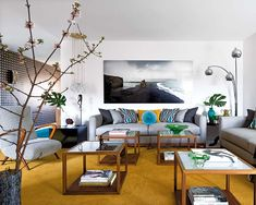 Color details and plants in the living room.