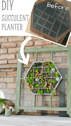 Search the thrift stores for one of these trinket display cases to make a hanging succulent planters. Could also use a Melissa and Doug wooden toy box with those little compartments and paint it!
