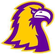 Tennessee Tech Golden Eagles Alternate Logo (2006) - An Golden Eagle's head