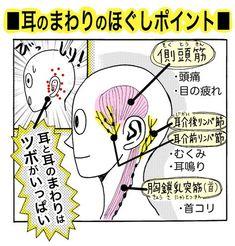 本格的な冬の寒さになり、外に出ると耳が冷えてちぎれそうに痛い……!首コリや脳の活性化にも効果的な、かんたん「耳ほぐし」で頭部から温まってみませんか!?耳には毛細血管が通っていますが、とても細く血液の量... Tabata Workouts, Face Massage, Acupressure Points, Body Treatments, Health And Beauty Tips, Massage Therapy, Beauty Care, Body Care, Health Fitness