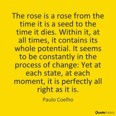 The rose is a rose from the time it is a seed to the time it dies. Within it, at all times, it contains its whole potential. It seems to be constantly in the process of change: Yet at each state, at each moment, it is perfectly all right as it is. - Paulo Coelho
