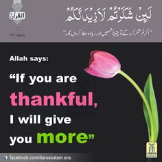 Allah Says . Hindi Quotes, Islamic Quotes, Quotations, Alhamdulillah For Everything, Islam Marriage, Almighty Allah, Religious Text, I Need U, Noble Quran