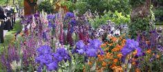 The Healthy Cities Garden Planting List | Pumpkin Beth