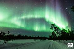 This is Finland! Lappland, Aurora Borealis, Northern Lights, Fire, Night, Amazing, Nature, Travel, Image