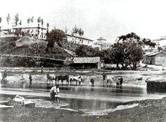Azevedo, Militão Augusto de. Várzea do Tamanduateí, 1862.