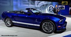 2013 GT500 Convertible Chicago Auto Show'da tam boy resmini görmek için tıklayın