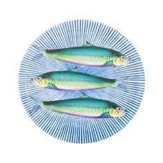 Fish Dinner Plate | ZARA HOME Danmark