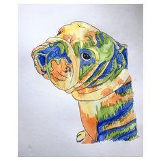 British Bulldog - pen and watercolour  Instagram : @Jade_king_art