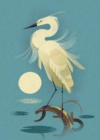 Animal Illustration by Sarah Abbott #icon #illustration #animal #birds #print