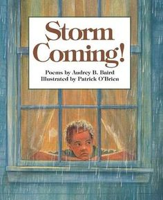 Storm Coming! by Audrey Baird  *POETRY*