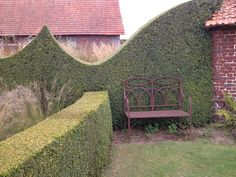 I like how this one builds... wave topiary hedge