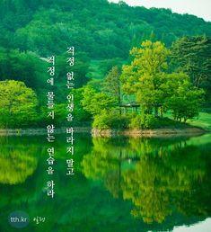 걱정 없는 인생을 바라지말고 걱정에 물들지 않는 연습을 하라 - 알랭 #톡톡힐링 Korean Quotes, Korean Language, Self Improvement, Proverbs, Cool Words, Best Quotes, Quotations, Poems, Typography