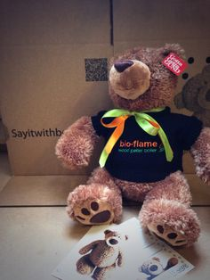 Corporate branded Bear for Bioflame Boilers. Want your brand on a bear talk to us to see the possibilities. Personalised Teddy Bears, Boiler, Halloween, Toys, Personalized Teddy Bears, Activity Toys, Clearance Toys, Gaming, Games