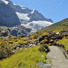 MUST DO: Rob Roy Glacier Track - Mt. Aspiring National Park (3-4 hours day hike)