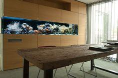 Meerwasseraquarium Raumteiler in Kundenshowroom http://www.aquariumwest.de  #Meerwasser-Aquarium  #Aquariumbau #Aquarium München #Aquarienwartung