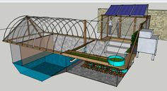 Aquaponics system in a backyard swimming pool capable of feeding a family with fish, eggs, veggies and fruit year-round