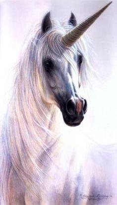 i call him, fluffy the unicorn.
