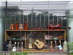 Shop Window - String Instruments