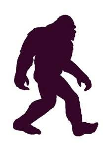 Our Expert Movers are strong and move so fast- you might think there is a Big Foot is moving you!  Call West Coast Relocation for the moving experience you deserve.    We provide Full Service Experience.  Call Us Today 1-714-538-3601