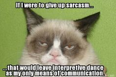 If I were to give up sarcasm...that would leave interpretive dance as my only means of communication..