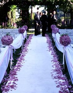 draping tulle down the aisle. Petals are dirt cheap online. TULLE is pennies a yard at GIFTSINTL.com http://www.giftsintl-us.com/tullefabric.php - Pair up purple AND white for color by lake.