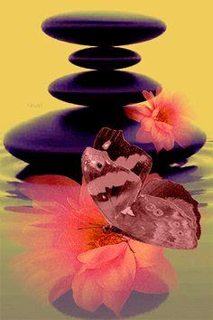 GIFS HERMOSOS: poupurri de cosas hermosas encontradas en la web