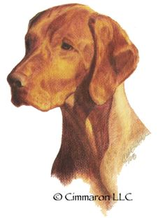 Cimmaron Dog Art creates art work, t shirts, and decals for all breeds of dogs including corgis,irish setters and vizslas. All Breeds Of Dogs, Irish Setter, Dogs Golden Retriever, Vizsla, Dog Art, Being Used, Hand Drawn, Corgi, How To Draw Hands