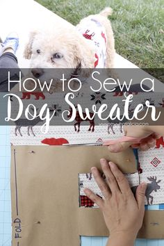 Sewing For Beginners Image with text overlay that reads how to sew a dog sweater. - If your dog gets chilly in the winter you need to know how to make dog sweaters to keep them warm. Click through for a video and written tutorial. Sewing Hacks, Sewing Tutorials, Sewing Tips, Sewing Ideas, Diy And Crafts Sewing, Diy Crafts, Little Presents, Leftover Fabric, Dog Sweaters