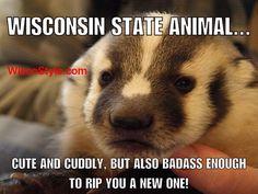 Meanwhile in Wisconsin Wisconsin Funny, Wisconsin Badgers, Bucky, University Of Wisconsin, Lake Geneva, My Heritage, Green Bay, Milwaukee, Illinois